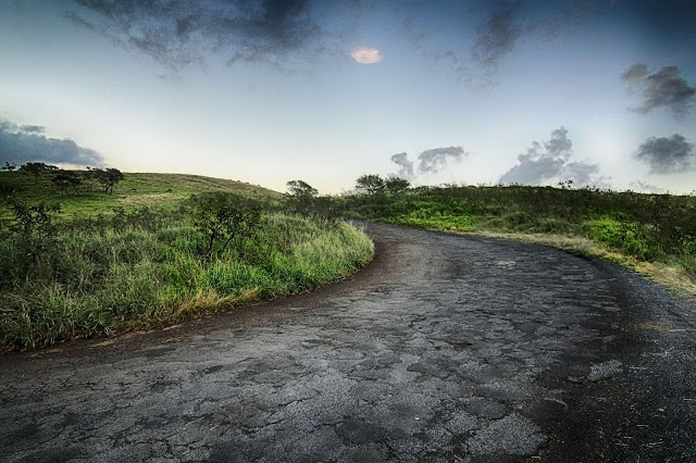 back road on the Road to Hana just before sunset