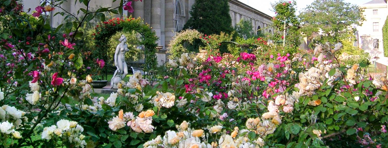 Promesse de roses rendez vous aux jardins 2016 for Jardin des plantes orchidees 2016