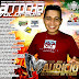 Cd (Mixado) Dj Mauricio - Arrocha - Vol.01