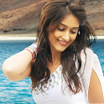 Ileana Jr.NTR Latest Stills In Shakthi Movie
