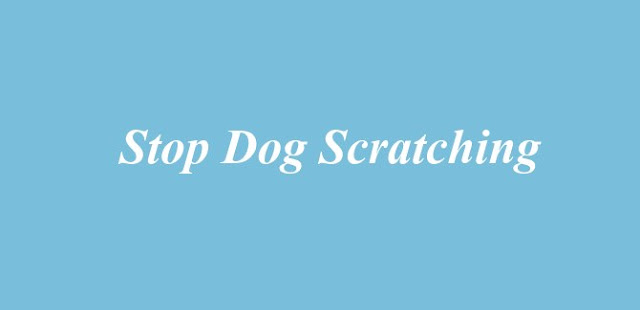 Stop Dog Scratching