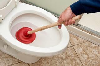 sedot wc top