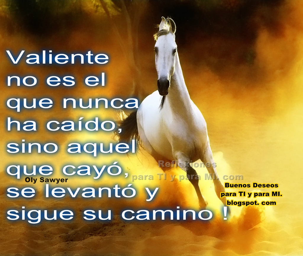 Imagenes De Caballos Con Frases Chidas De Amor