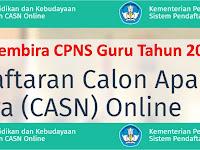 Kabar Gembira Penerimaan CPNS Guru Tahun 2018, Kemendikbud - Tidak harus punya sertifikasi profesi