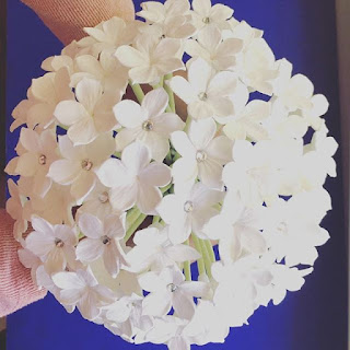 stephanotis bouquet price