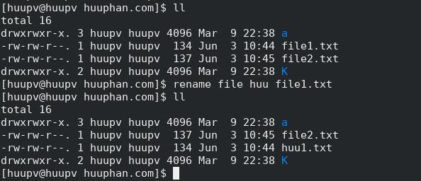 rename command in linux