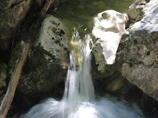 Wasserspiele in der Pöllat-Schlucht