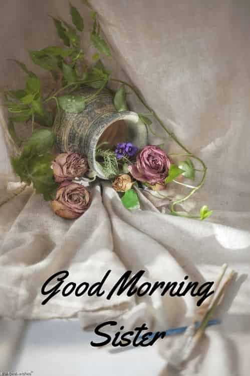 good morning pic for elder sister