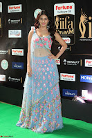 Amyra Dastur in Flower Print Choli Transparent Chunni at IIFA Utsavam Awards 37.JPG