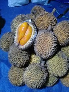 buah papakin berwarna oranye