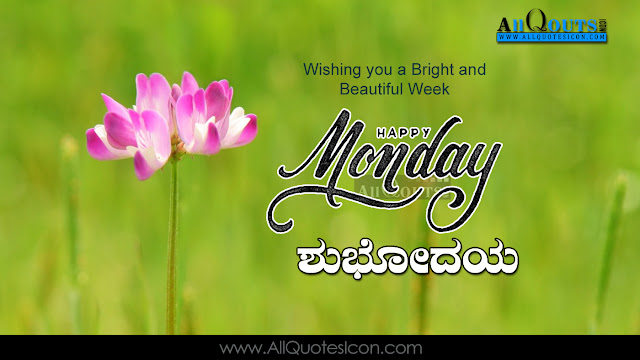 Good Evening Images With Quotes In Kannada Best Hd Wallpaper