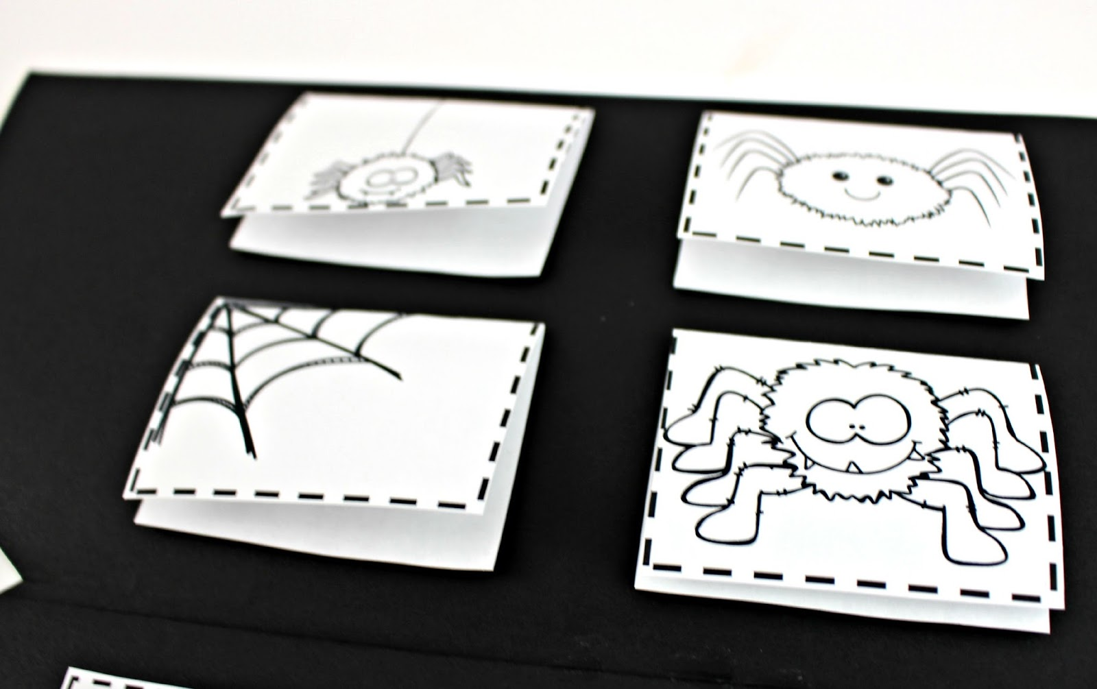 Spider Science Booklet