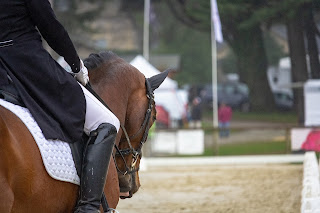 Bay horse being ridden at a dressage competition