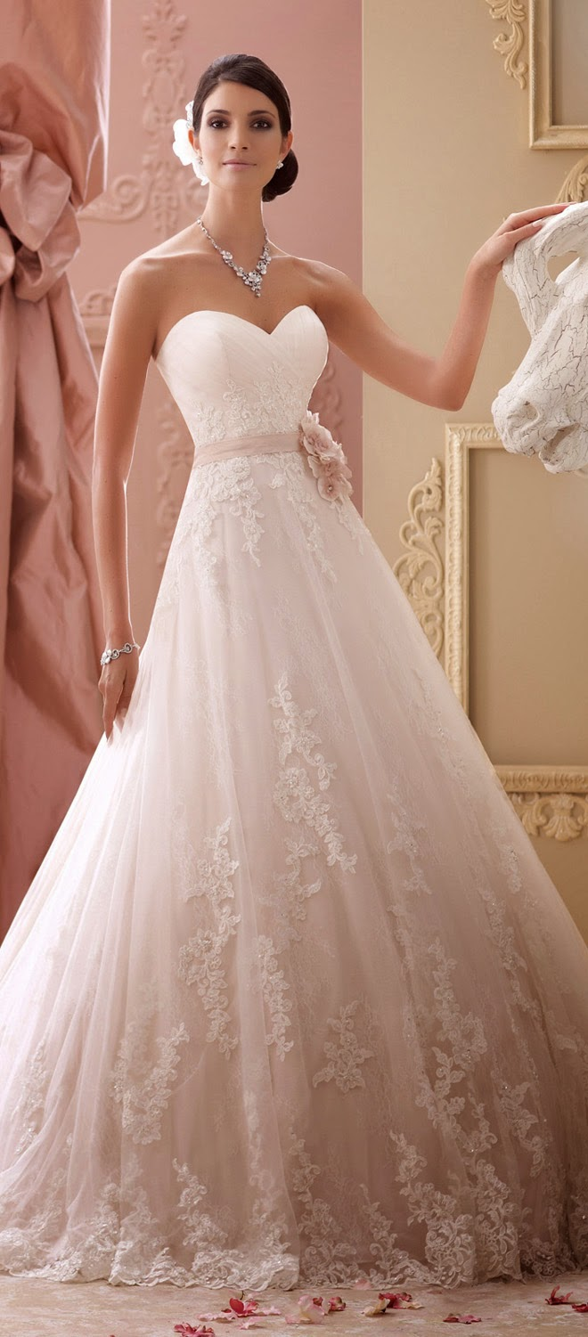 David tutera for mon cheri spring 2015 bridal collection belle please contact mon cheri for authorize retailers and pricing information see more of david tutera for mon cheri gorgeous bridal junglespirit Image collections