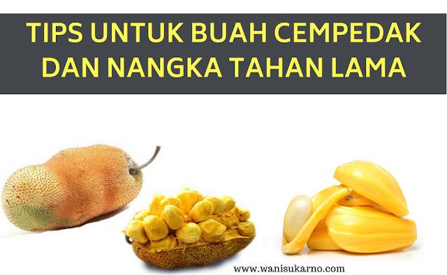 tips untuk buah cempedak dan nangka kekal segar dan  tahan lama