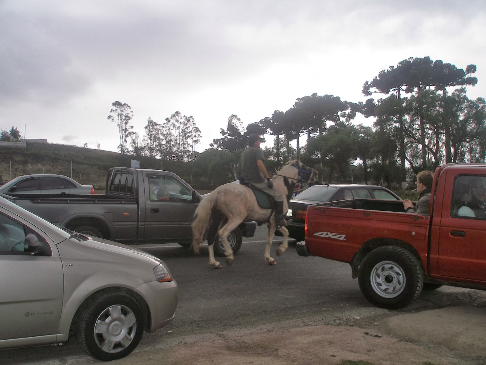 horseback rider among traffic
