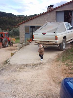 los olivares ,camino ,pantano de Pena, Beceite, Beseit, Diego, pickup, L200, tractor