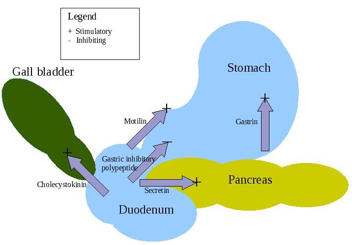 Панкреозимин