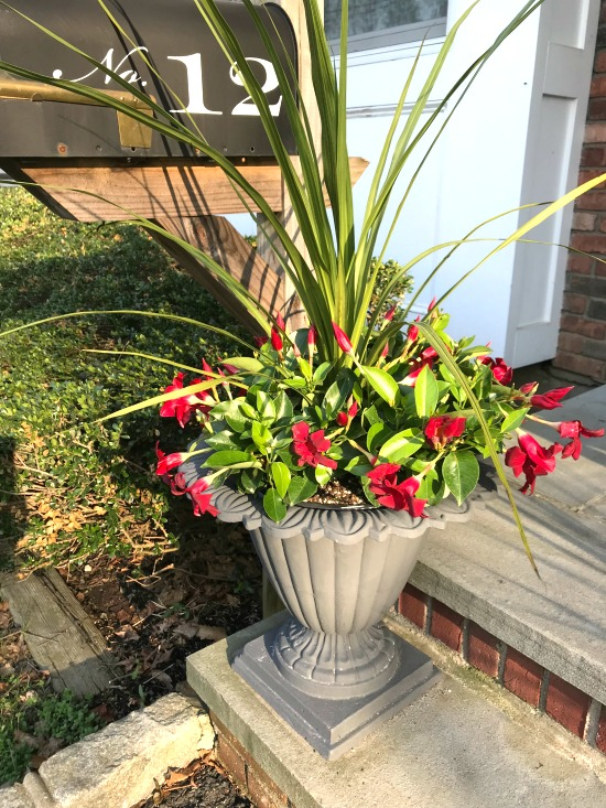 Painted iron planter and flower ideas