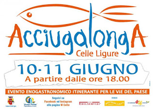 Acciugalonga 10 - 11 Giugno Celle Ligure 2016