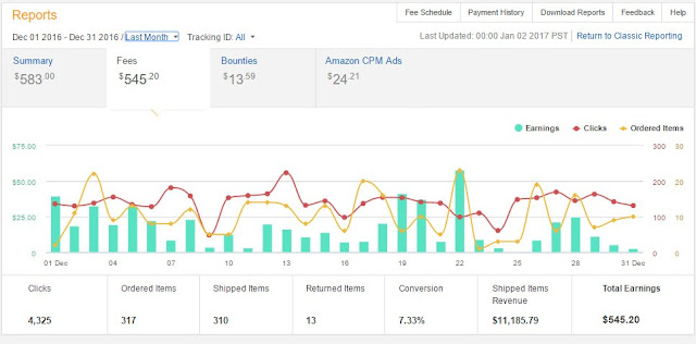 Earning Report of a Month in Amazon Associates