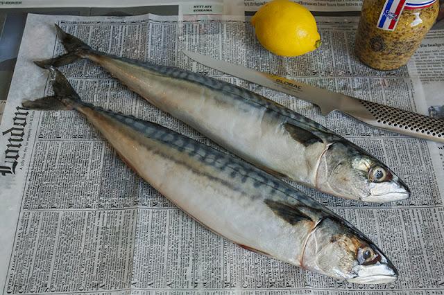 Halstrad makrill med senapsdressing