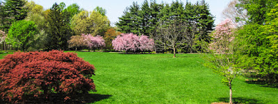 Garden Walking Tour at Frelinghuysen Arboretum Offers some Low-Cost, End-of-Summer Fun