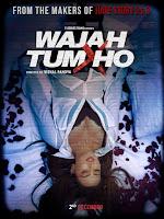 Wajah Tum Ho 2016 Hindi 720p DVDRip Full Movie Download