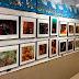 🎨 Expo foto submarina 13-17feb'17