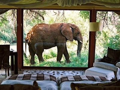 hotel en la naturaleza