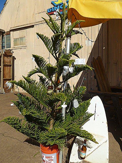 Norfolk Christmas Tree