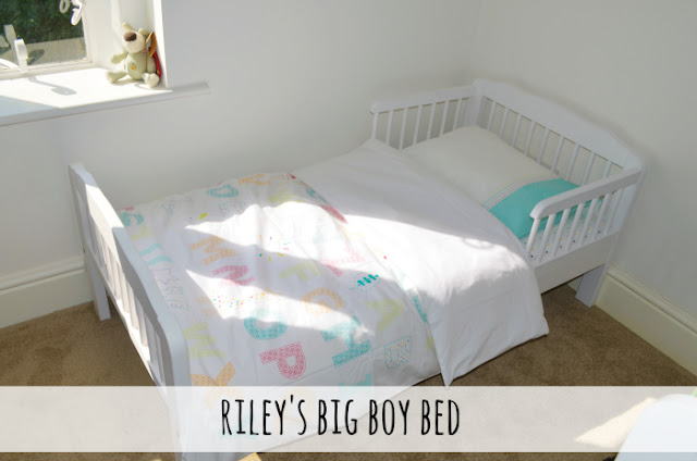 Riley's Big Boy Bed