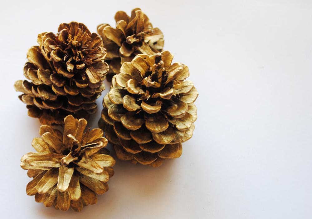Peachy Cheek Painted Pine Cones