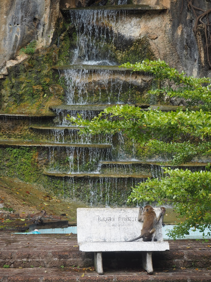 monkeys at tiger cave temple krabi