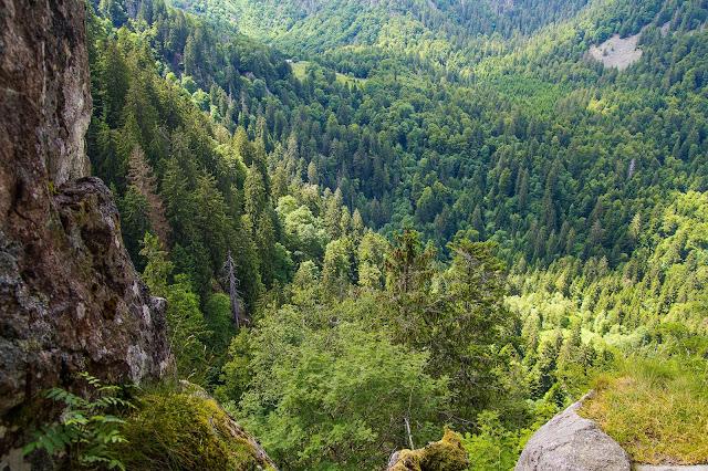 Ausblick in Vogesen-Landschaft, Wald, Bäume, Berge, Hohneck Natur Landschaftsfotografie Andreas Blauth