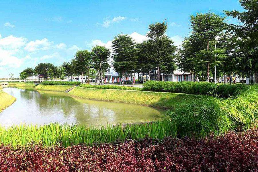 Khuôn viên nội khu của Swan Bay Đại Phước