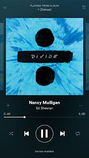 William Sheeran Nancy Mulligan Ed's Grandparents And Parents