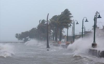 Nghe đài báo bão- Phan Lan Hương