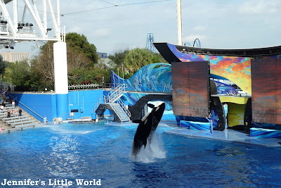 SeaWorld Orlando show