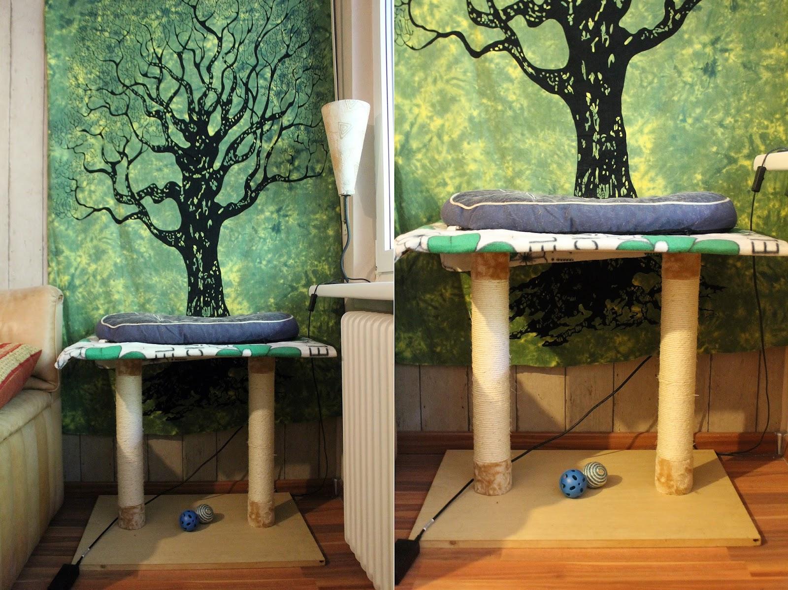 nimsaj katzenhaltung f r anf nger meine tipps erfahrung. Black Bedroom Furniture Sets. Home Design Ideas