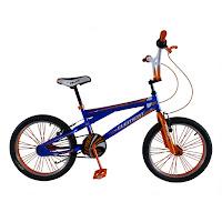 20 Inch Element Beast BMX Bike