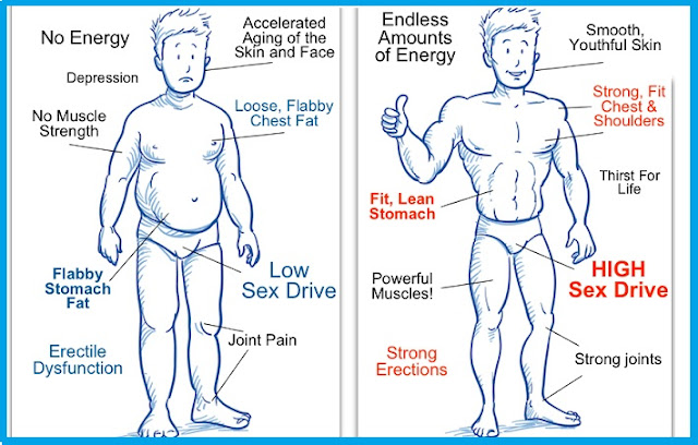 How Can I Increase My Testosterone Levels for More Muscle Growth?