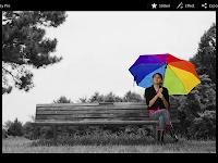 PicSay Pro v1.7.0.5 Apk Terbaru