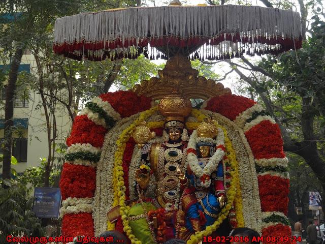 Anandha Padmanabha Swamy Brahmothsavam Photos