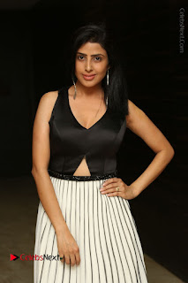 Actress Pragya Stills Beautiful Long Dress at RGV Shiva to Vangaveeti Event  0006.JPG