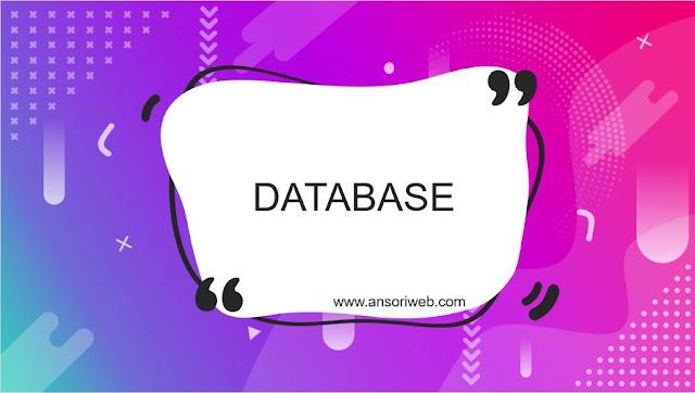 Pengertian Database : Fungsi, Komponen, dan Contoh Basis Data