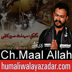 https://www.humaliwalyazadar.com/2018/09/chaudhry-maal-allah-nohay-2019.html