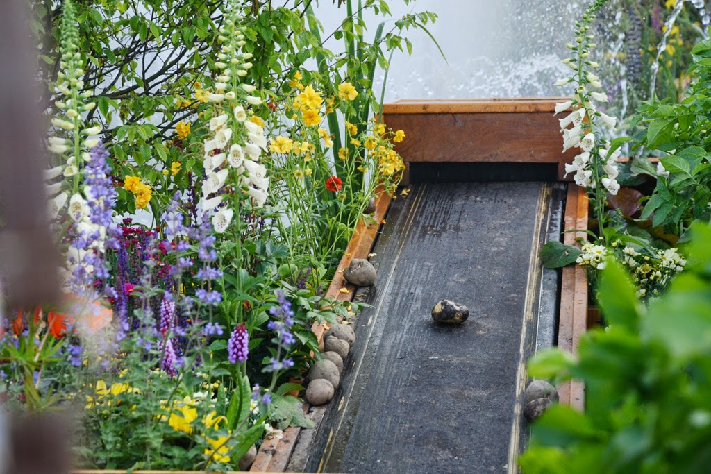 ciekawy ogród pokazowy
