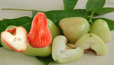 Wax jambu, wax jambu fruit,জামরুল