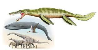 Resultado de imagen para el Liopleurodon